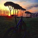 Foto parco_3